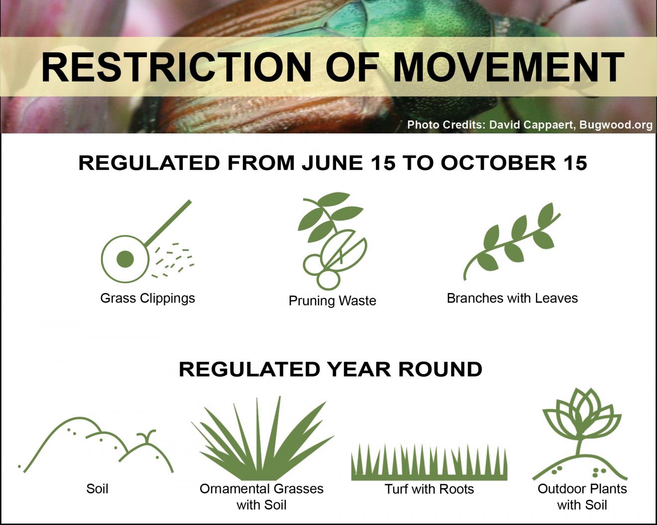JB - Restriction of Movement